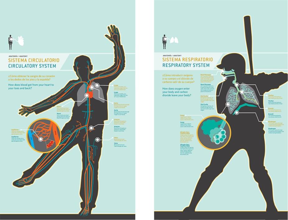 Puerto Rican science museum exhibit graphic design