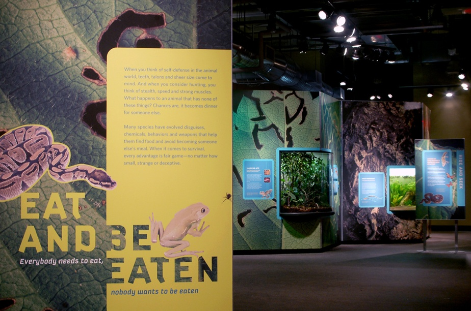Eat and Be Eaten Museum Exhibition Graphic Design